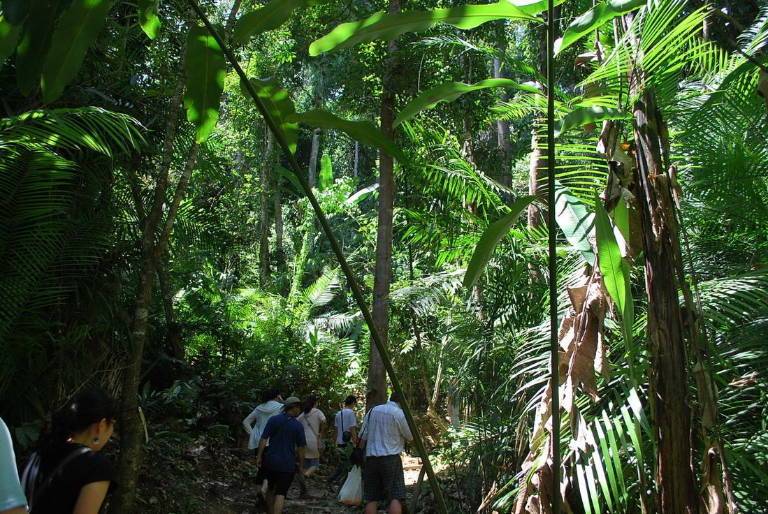Самостоятельно на Борнео штат Сабах, Малайзия - зоопарк Кота Кинабалу (Kota Kinabalu) отзыв Юрьева Андрея
